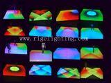 Hot Sale 1m*1m Professional Version LED Digital Dance Floor