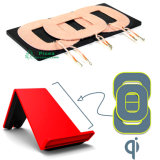 Wireless Power Charging Coil Wireless Charging Transmitter 3 Coil