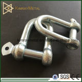 European Galvanized Commercial Type D Shackle
