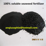 Dark Brown Water Soluble Alga Fertilizer for Sale