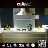2015welbom Modern MDF High Gloss Lacquer Kitchen Cabinet (TTT-01)
