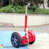 2 Wheel Electric Standing Scooter Electric Bike