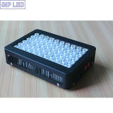 100*3W 380-730nm LED Grow Lights with Full Spectrum for Vegs