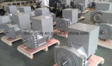 Electrical Alternators Generators with Faraday Brand China Wuxi Factory