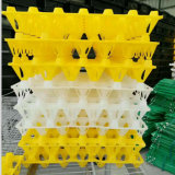 High Quality Egg Crate Plastic Chicken Egg Trays
