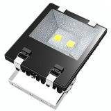 100W Philips Chips CE RoHS CCC LED-Flood Light