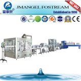 Full Automatic Rotary Pet Bottle Mineral Water Rinsing Washing Filling and Capping Machine