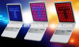 Photon LED Skin Rejuvenation (with 496 LED lights)