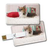 Credit Card USB Flash Drive Christmas Gifts