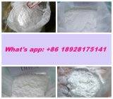 Pharmaceutical Local Anaesthetics Tetracaine Hydrochloride with 99% Purity