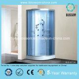 Household Matt Glass Massage Steam Sauna Complete Shower Cabin (BLS-9713B)