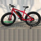 Big Tyre Electric Bicycle for Mountain Trip