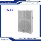 Luxuriant in Design Single 12 Inch Full Frequency Moitor Speaker