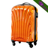 Shining Metal Effecting Luggage Case