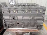 Original Cummins Cylinder Block Qsb5.9 Part Number 4089119