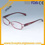 6219 Full Rim Metal and Acetate Optical Eyeglasses