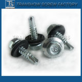 China Manufacture Transhow Roofing Screw SDS