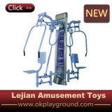 Luxury Outdoor Fitness Equipment with Ce Certificate (LJ-10271)