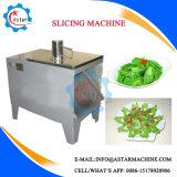Balsam Pear/Cucumber/Eggplant/Lotus Root Slicer Machine (Slicing Machine)