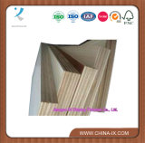 Good Quality Commercial Plywood Board