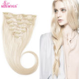 Clip Hair Extension Remy Brazilian Human Hair Extension