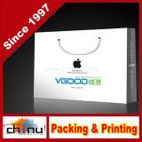 Custom Printing Shopping Paper Bag (5126)