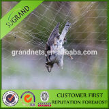 High Durable Control Birds Agricultural Netting