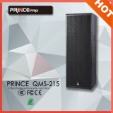 Dual 15inch Powerful PRO Audio PA Professional Speaker