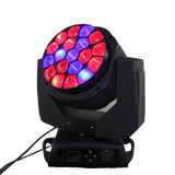 19X15W LED RGBW Bee Eyes Moving Head Light with Zoom