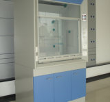Bsc Series Clean Biological Safety Cabinet