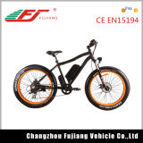 High Quality Fat Tire Electric Bike/Bicycle