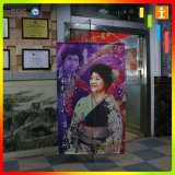 Art Fabric Canvas Murals UV Ink Printing