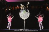 Holographic Reflection Film / Transparent Holographic Stage Foil