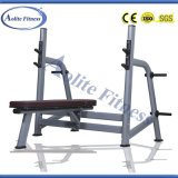 Gym Bench Bench Press (Luxurious)