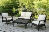 Wicker Outdoor Furniture Garden Patio Rattan Sofa Set (FS-2921+FS-2922+FS-2923)