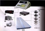 Weighing Capacity Digital Electronic Truck Scale Weighing Load Series