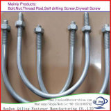 Grade 4.8/8.8 Carbon Steel Zinc Galvanized U Bolt