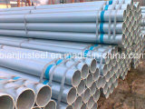Hot Sale Dn20 Hot Dipped Galvanized Steel Pipe