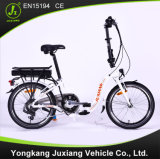 Classic Electric Folding Bike (TDN29Z)