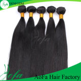 The Straight Hair Brazilian Virgin Human Hair Weft