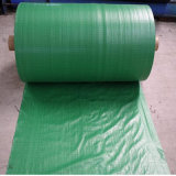 PP Woven Anti-Grss Fabric for Agriculture