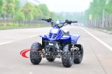 2016 New 50cc Ce Approved Kids ATV (AT0501)