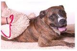 Washable Pet Product Chenille Dog Bath Clean Towel