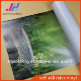 Top Quility Self Adhesive Vinyl