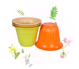 High Quality Bamboo Fiber Flower Pots (BC-FP1045)