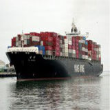 Professional Ocean Shipping Service From Guangzhou to The USA