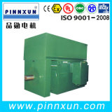 3.3kv 3 Phase Squirrel Cage Induction Motor