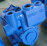 Self-Priming Pump (1DBZ)