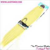Clip Hair Extension/ Human Hair / Clip in Hair Extension