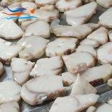 Frozen Seafood Blue Shark Steak Skinless